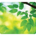 Fellowes Recycled Mouse Pad - Leaves - Leaves - 8in x 9in x 0.1in Dimension - Multicolor - Rubber Base - Skid Proof - TAA Compliant